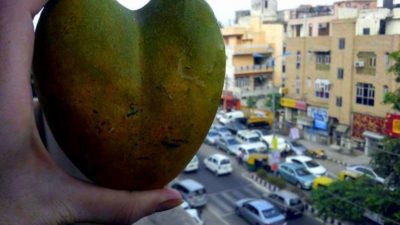 Mango health benefits is mango a superfood . travel boutique india